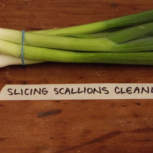 Slicing Scallions Cleanly